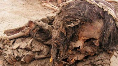 """Photo of Korku Hikayelerinden; 18+ """"Mezarın Çocukları"""" I. Bölüm"""