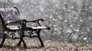 """Photo of Sait Faik Hikayelerinden """"Kış Akşamı, Maşa ve Sandalye"""""""