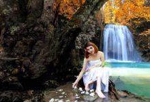 Photo of Rüya Ormanı Hikayesi 1. Bölüm
