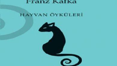 "Photo of Hayvan Hikayeleri; ""Melezleme"""
