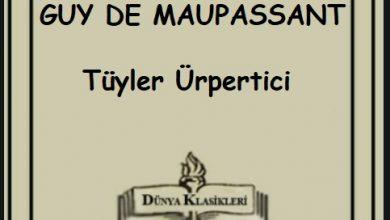 Photo of Tüyler Ürpertici Bir Hikaye