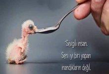 Photo of ÇOK GÜZEL BİR HİKAYE