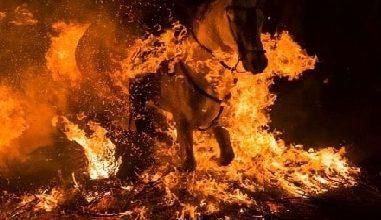 """Photo of Hikaye Oku; """"Onin ve Ateşin İçinden"""" 3. Bölüm"""