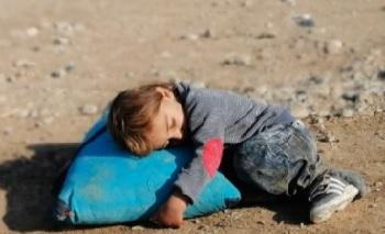 """Photo of Gerçek Bir Hayat Hikayesi; """"ZEYTİN DALI"""""""